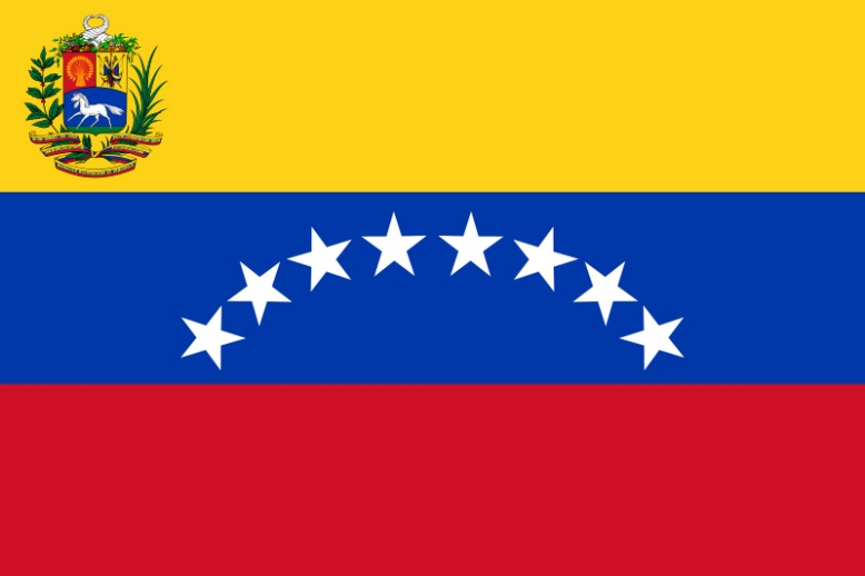 bandera VZLA actual